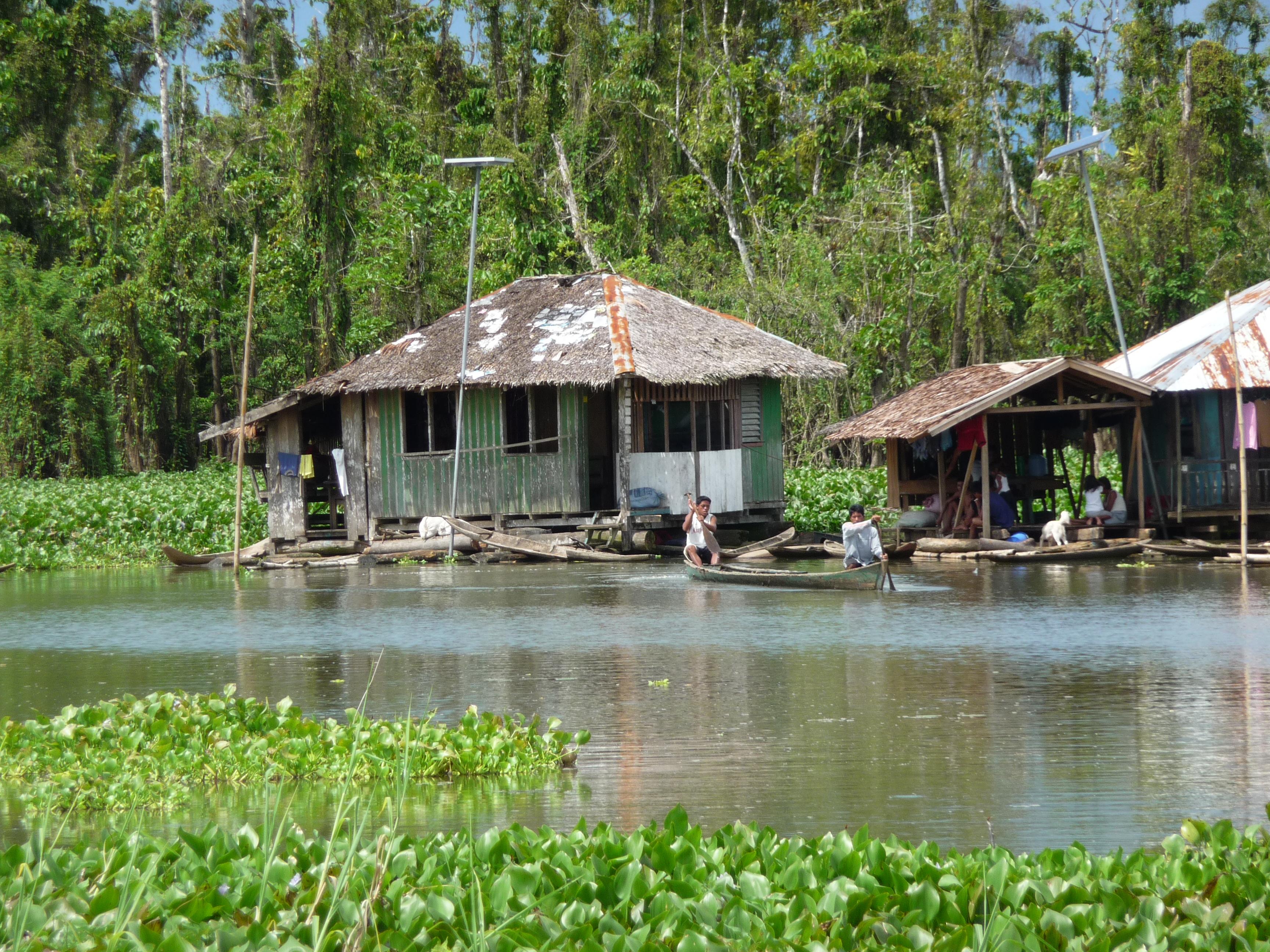 Schutz der Lebensgrundlage der Manobo