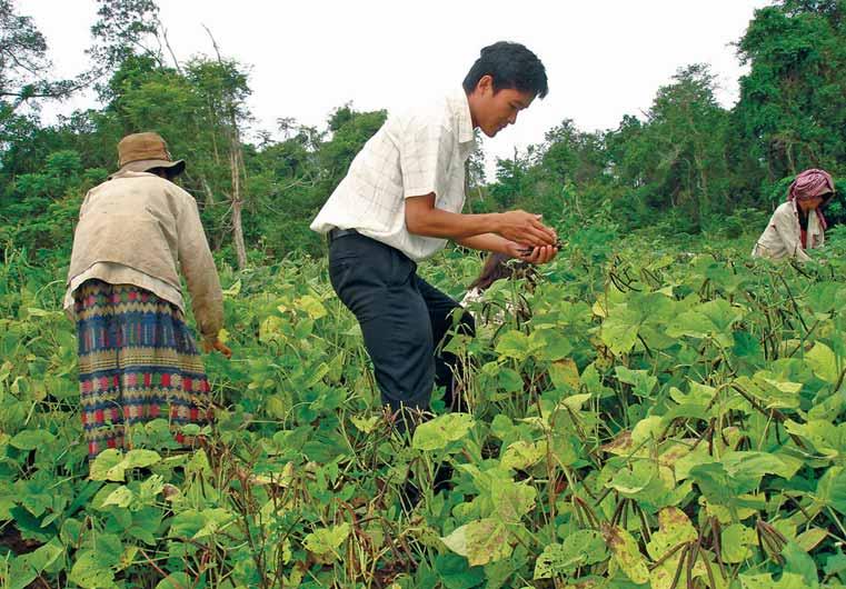 Veal Veng – Gemeindeentwicklung und Prävention von Kinderarbeit